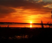 Evening2-Photo-Gallery-Duck-Hunting-In-Argentina-With-Nacho-CyC-Outfitters