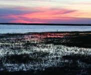 Santa-Fe-Photo-Gallery-Duck-Hunting-In-Argentina-With-Nacho-CyC-Outfitters