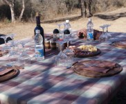 Snap-Photo-Gallery-Dove-Hunting-In-Argentina-With-Nacho-CyC-Outfitters